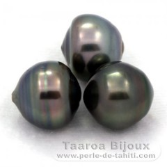 Lotto di 3 Perle di Tahiti Cerchiate C di 12 a 12.3 mm